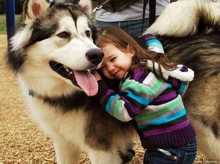 Benefits of Pet Ownership c
