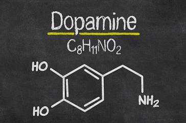 humans cheat dopamine